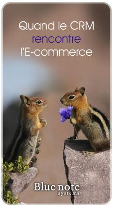 Connecteur CRM et E-commerce