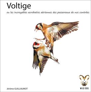 voltige300 Parution du livre: Voltige de Jérôme Guillaumot