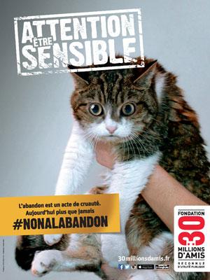 30MA_chat  La Fondation 30 Millions d'Amis et Optimus mettent la sensibilité animale au cœur de la campagne 2015 contre l'abandon