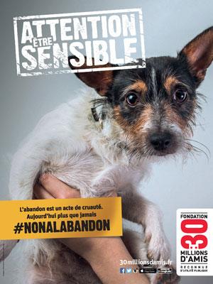 30MA_chien  La Fondation 30 Millions d'Amis et Optimus mettent la sensibilité animale au cœur de la campagne 2015 contre l'abandon
